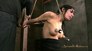 Brunette in bondage BDSM having her big tits pegged