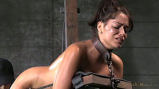 Busty restrained brunette Ava Dalush gets her throat penetrated