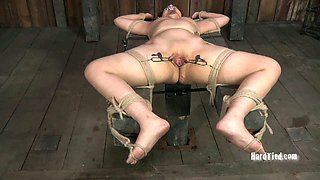 Chubby whore with small tits knows what rope bondage means