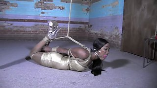 Black Beauty in a Bondage